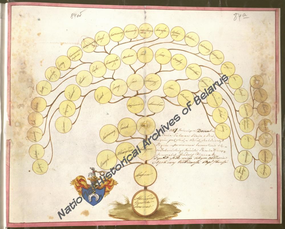 Генеалогическая таблица рода Довнар-Запольских герба «Побог (Pobog)». 28 декабря 1837 года