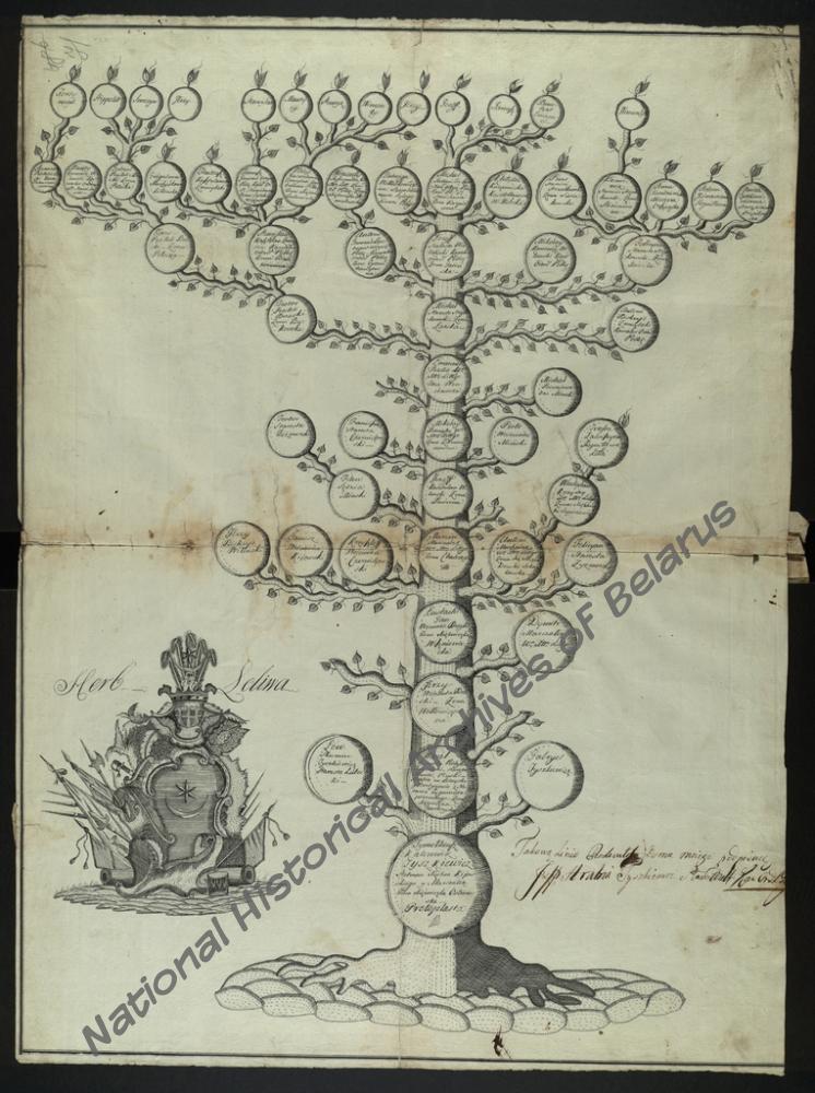 Генеалогическая таблица дворянского рода графов Тышкевичей герба «Лелива»