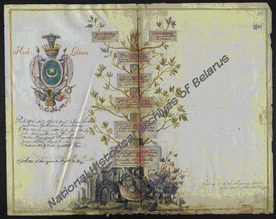 Генеалогическая таблица рода графов Гуттен-Чапских. 1802 г. Ф. 319, оп. 1, д. 24, л. 55