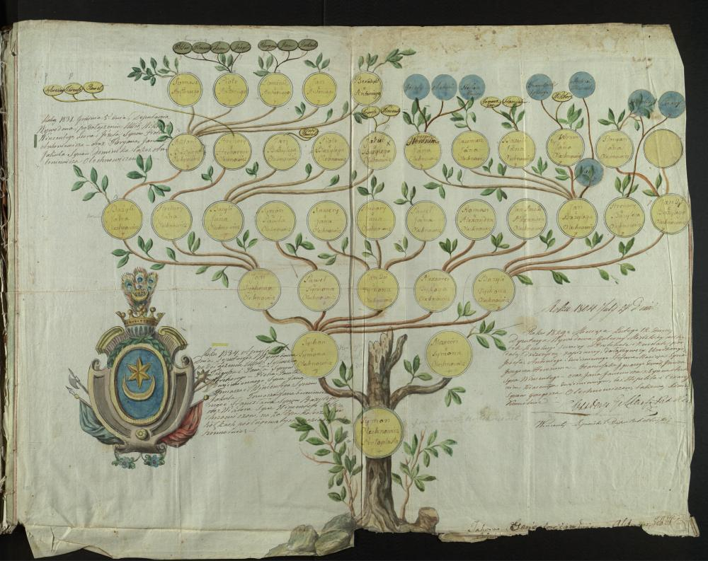 """Генеалагічная табліца дваранскага роду Аляхновічаў герба """"Ляліва"""" за 1804—1834гады."""